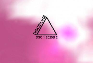 AAVV-Discipline-2-Compilation-2010-Ottodix-1-track (web)